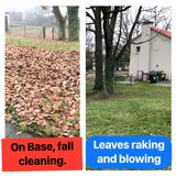 FALL CLEANING, LEAVES RAKING AND BLOWING, WEED REMOVAL, JUNK HAULING in Wiesbaden, GE