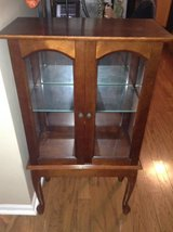 Cute Small Display Cabinet in Naperville, Illinois