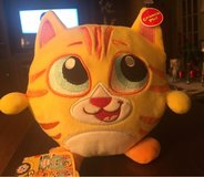 Crunchimals Kitty in St. Charles, Illinois