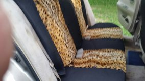 Leppard (Cougar?) Car Seat Covers ???? Bought just a few months ago?? in Hopkinsville, Kentucky