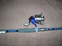 Quantum Fishing Pole and Reel in Chicago, Illinois