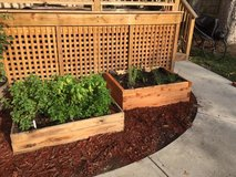Raised Cedar Garden Boxes in Cary, North Carolina
