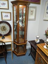 Curio Cabinet Lighted in Batavia, Illinois