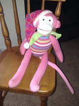 Cute Pink Monkey in Bolingbrook, Illinois