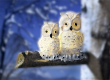 Solar LED Owls in white in Ramstein, Germany