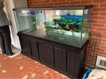 FISH TANK in Norfolk, Virginia
