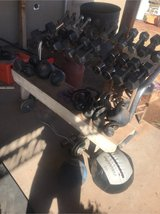 Dumbbells, Kettlebells, Z-bar with weight plates, weighted balls, and DB rack in Alamogordo, New Mexico