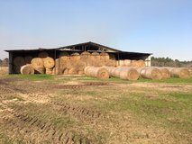 Round bale 4x5 tight roll in Leesville, Louisiana