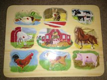 Animal Puzzle in Plainfield, Illinois