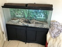 125 gallon fish tank with stand and lights and bald python in Alamogordo, New Mexico