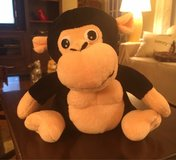 Laughing Monkey in St. Charles, Illinois