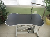 Dog Hydraulic Adjustable Grooming Table in Sandwich, Illinois