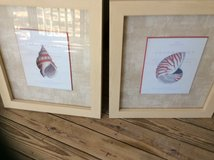 Framed Pictures, 21x24, Looks Brand New in Beaufort, South Carolina