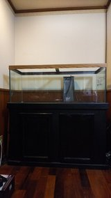 75g fish tank w/ stand and acc in Okinawa, Japan