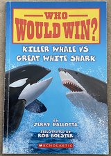 Who Would Win? Killer Whale vs Great White Shark in Okinawa, Japan