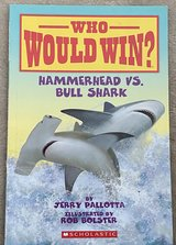 Who Would Win? Hammerhead vs Bull Shark in Okinawa, Japan