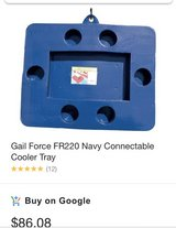 Gail Force Cooler Float in Orland Park, Illinois