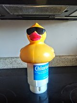 Extra large pool duck for chlorination in Fort Bragg, North Carolina