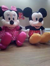 Mickey Mouse and Minnie dancing love pals in Camp Lejeune, North Carolina