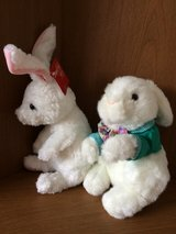 Easter - Spring Plush Rabbits in Batavia, Illinois