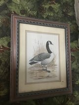 Canadian duck photo frame, matted for 5x7, 9.5 x 11.5 in Houston, Texas