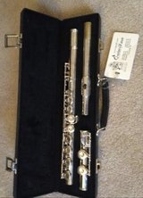 Flute in Glendale Heights, Illinois