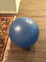 NordicTrack Exercise Ball in Chicago, Illinois