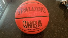 Spaulding NBA Professional Basketball in Sandwich, Illinois