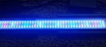 Fluval A3993 Saltwater Aquarium LED light in Oswego, Illinois
