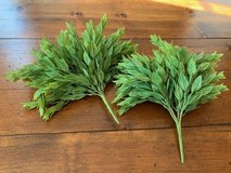 2 Herb Garden Stems in Kingwood, Texas