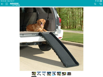 Dog ramp in Fort Campbell, Kentucky