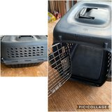 Petmate Plastic Kennel in Bolingbrook, Illinois