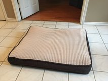 dog bed in Houston, Texas