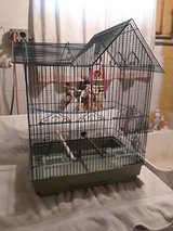Canary/Finch cage in Oswego, Illinois