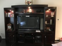 Entertainment Center for TV & more in Kingwood, Texas