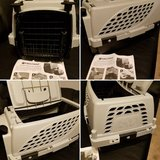 Pet carrier in Glendale Heights, Illinois
