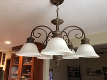 Light fixture with 5 globes in Alamogordo, New Mexico