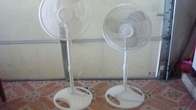 2 White Upright adjustable 18 inch oscillating Fan /  $ 15.00 ea. in Fort Bliss, Texas
