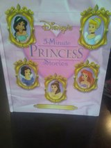 5 Minute Princess Stories in Naperville, Illinois