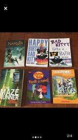 Misc Chapter Books in Naperville, Illinois