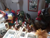 Roosters and Chickens in Alamogordo, New Mexico