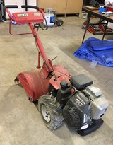 auction this Saturday March 7th in DeRidder, Louisiana