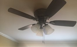 "42"" Ceiling Fan in Naperville, Illinois"