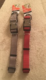 Large Dog Collars in Wheaton, Illinois