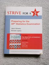 Strive For A 5 Preparing for the AP Statistics Examination in Chicago, Illinois