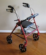 Rolling Walker with Back Support in Spring, Texas
