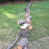 pine cut up deridder in Fort Polk, Louisiana