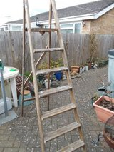 6 ft Wooden Decorators Ladder in Lakenheath, UK