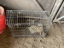 Wire Cage in Fort Polk, Louisiana