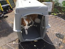 Sky kennel Large (50-70 lb.): 36 x 25 x 27 in dog crate in Okinawa, Japan